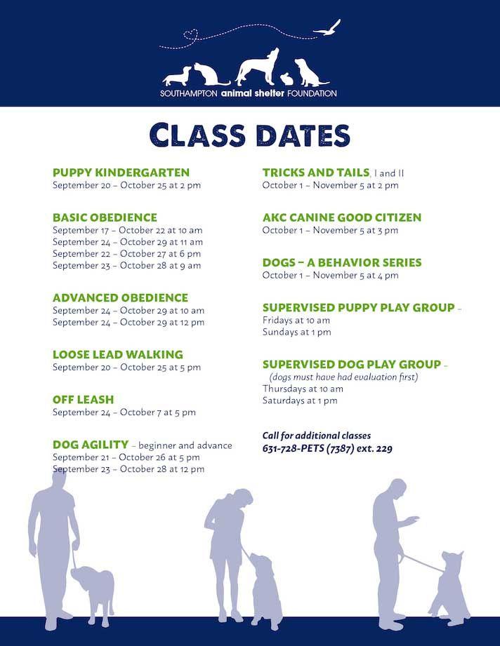 Dog Training Fall 2017