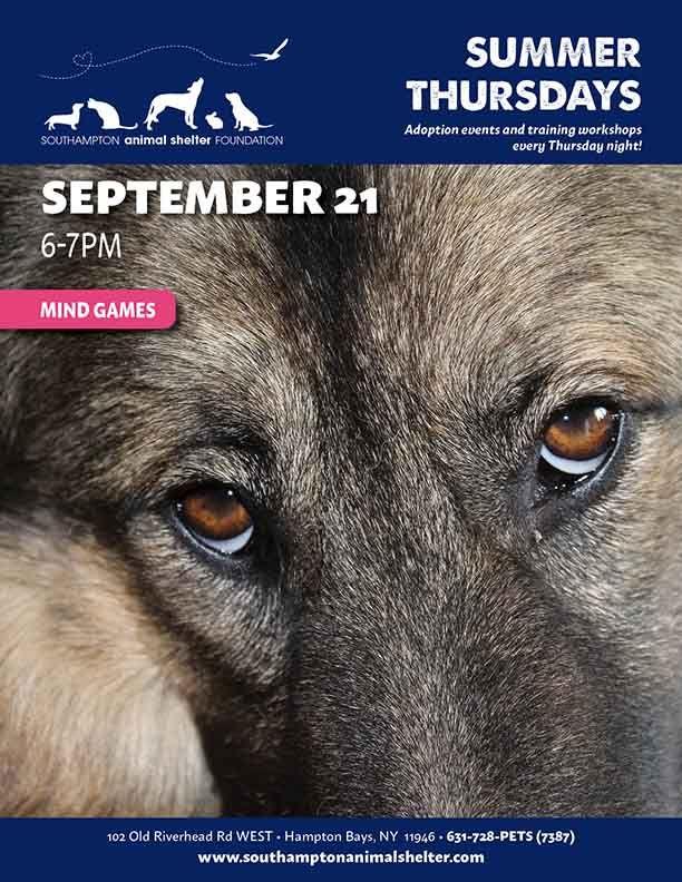 Thursday Summer Night Sept21 Mind Games