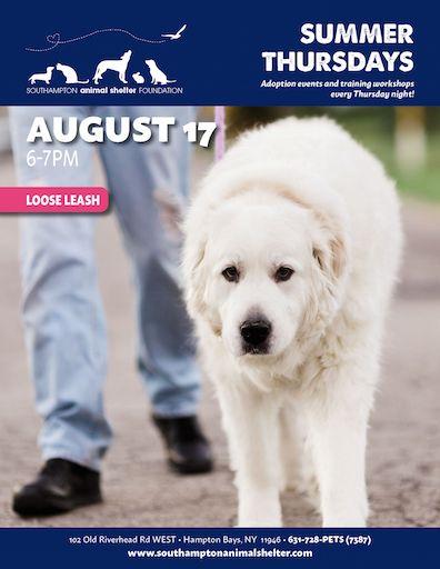 Thursday Summer Night Aug17 Loose Lead
