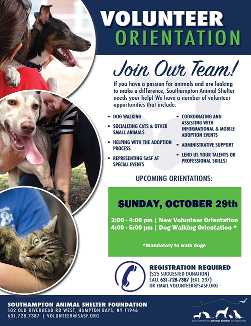 Volunteer Orientation 10/29
